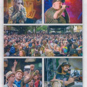 06.08.2017, Oldenburgische Volkszeitung am Sonntag